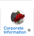 CorporateInformation